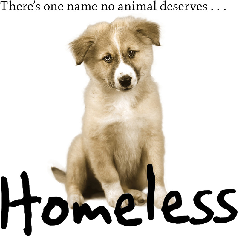 There's one name no animal deserves...homeless.