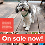 Click here for more information about 2020 AHS Pet Calendar